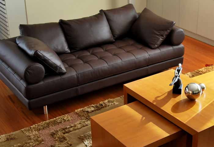 Couch, Sofa, Armchair, Mattress and Upholstery Cleaning