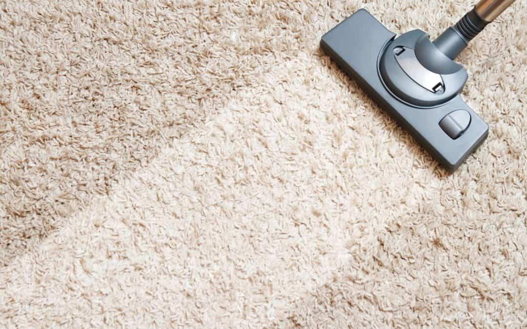 Como limpar tapetes – Orientações Básicas