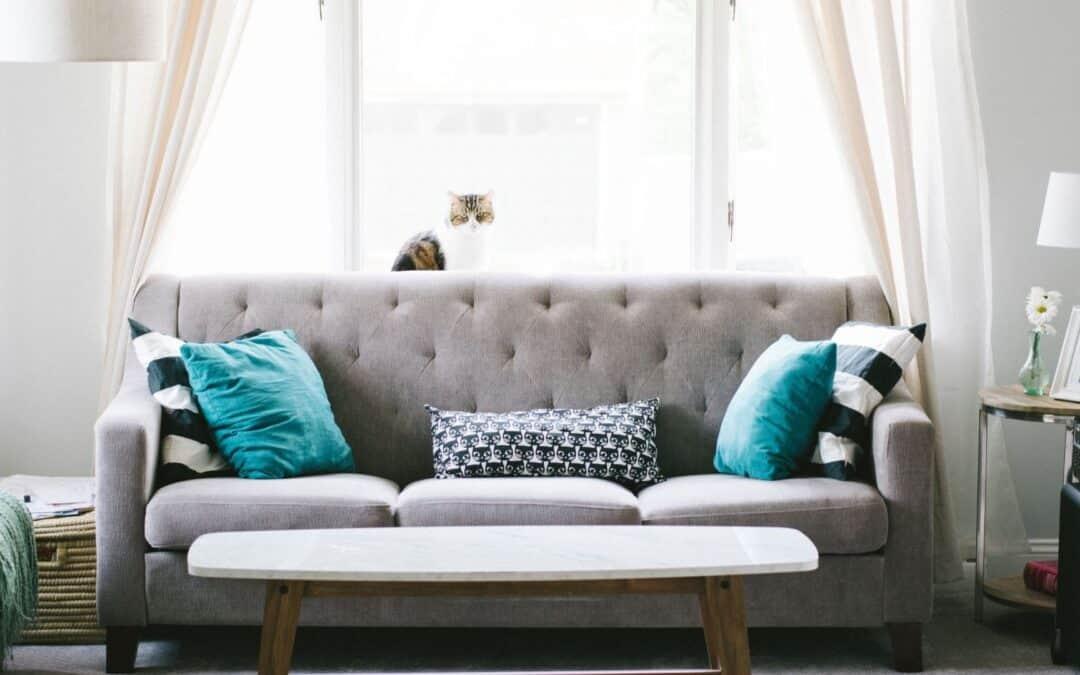 Como lavar sofa